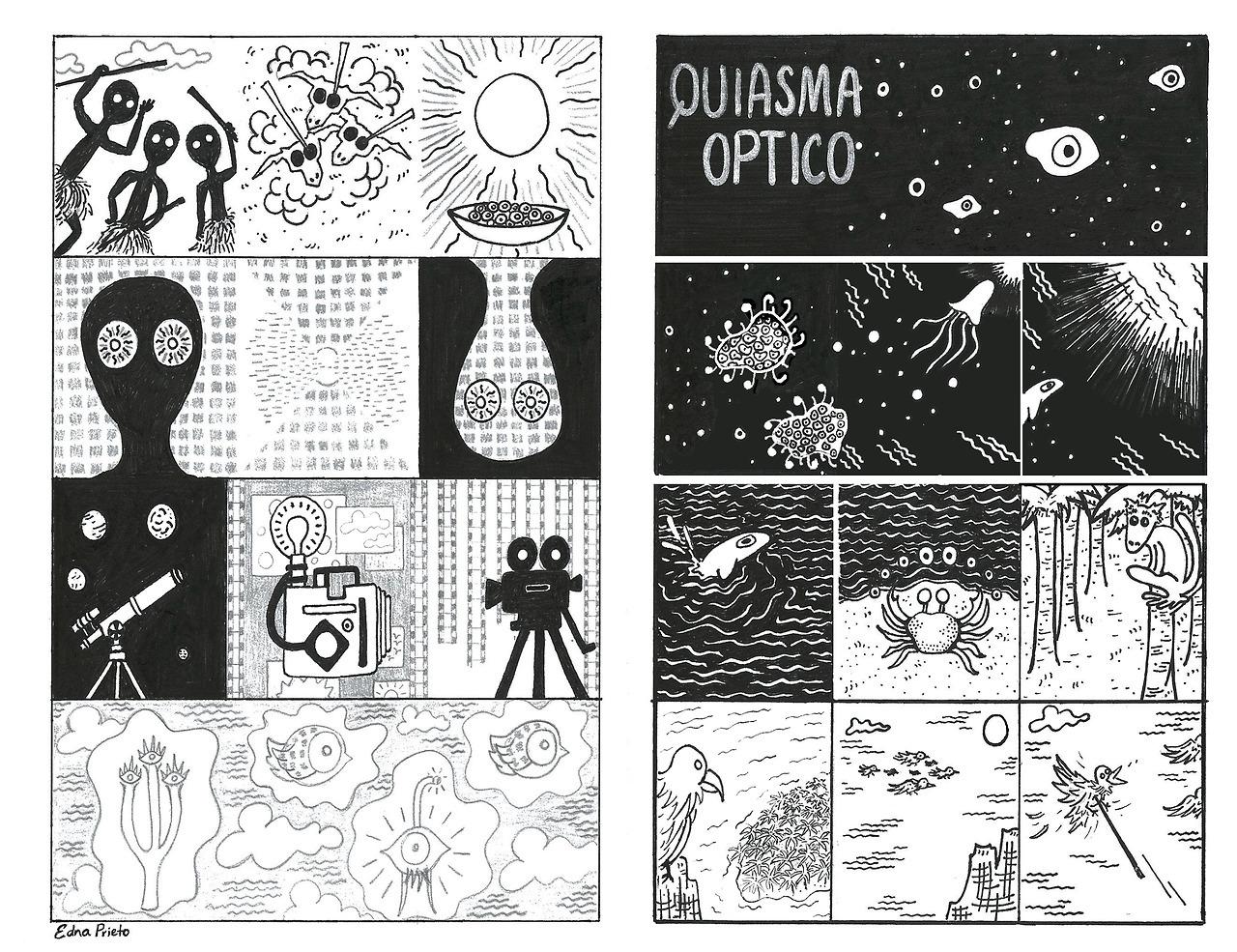 quiasma