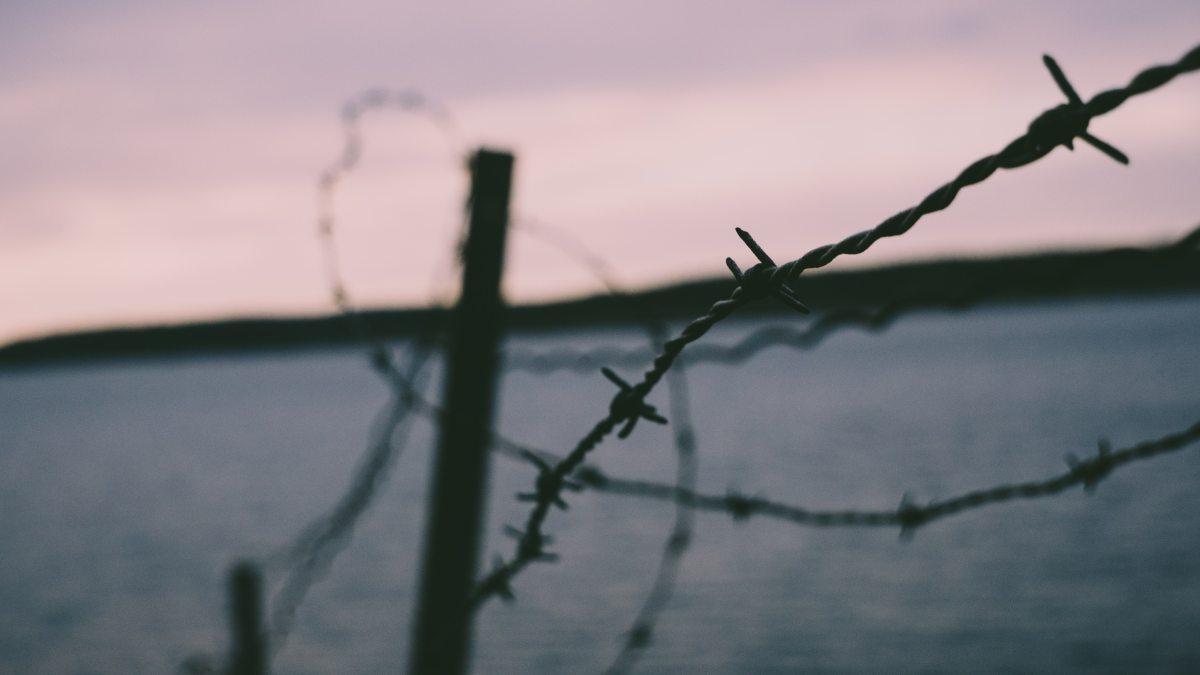 Tres poemas sobre los feminicidios en México