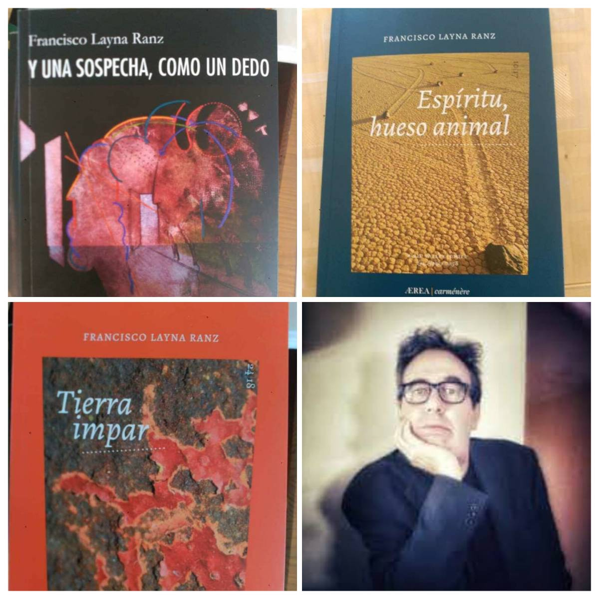 Francisco Layna Ranz: «Lo diáfano no admite glosa». Entrevista sobre su obra poética y por el  panorama de la poesía española actual